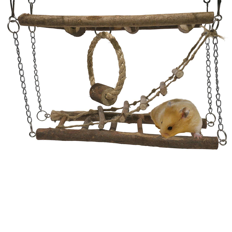 pont suspendu hamster